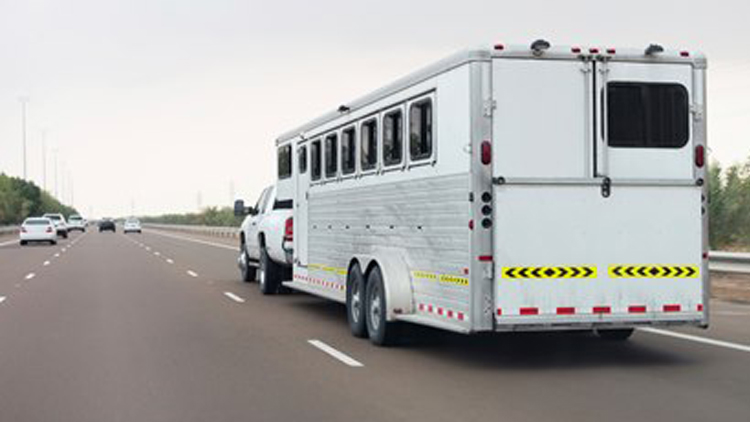 horse-trailer-on-highway