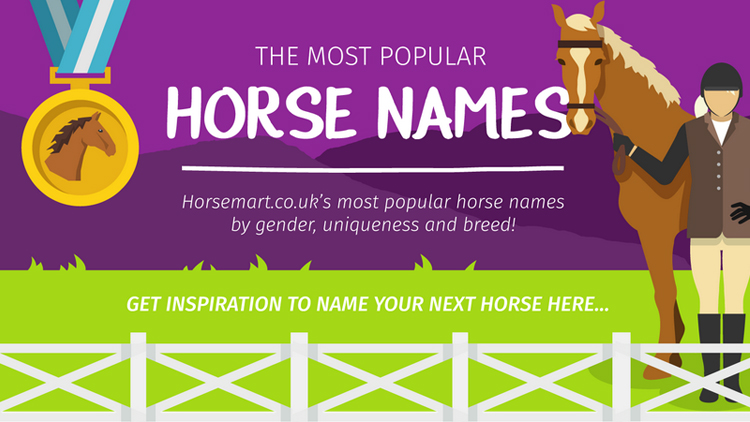 find the perfect horse name habitat for horses