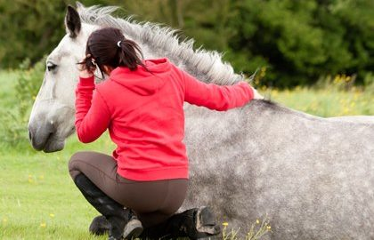 sitting-with-down-horse-in-field